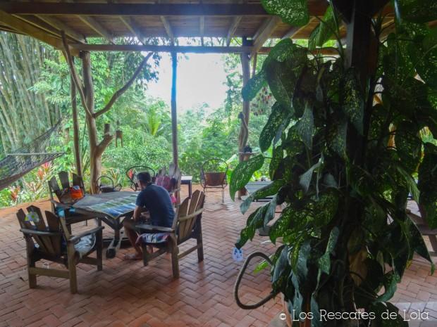 Materiales para el diseño y la decoración- el bambú-1