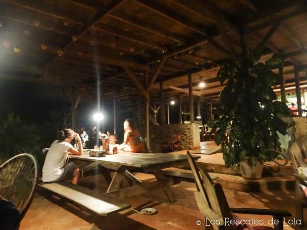 Materiales para el diseño y la decoración- el bambú-15