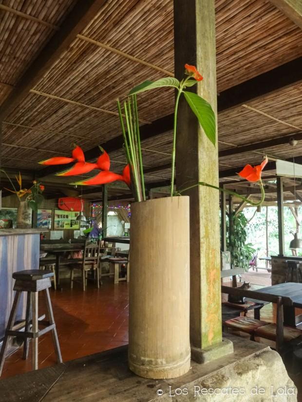 Materiales para el diseño y la decoración- el bambú-18