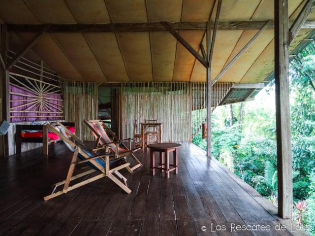 Materiales para el diseño y la decoración- el bambú-23