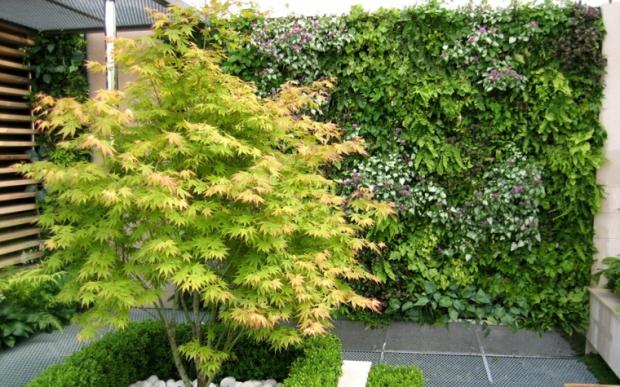 bonito.patio-jardin.verticsal