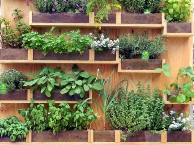 jardines verticales3