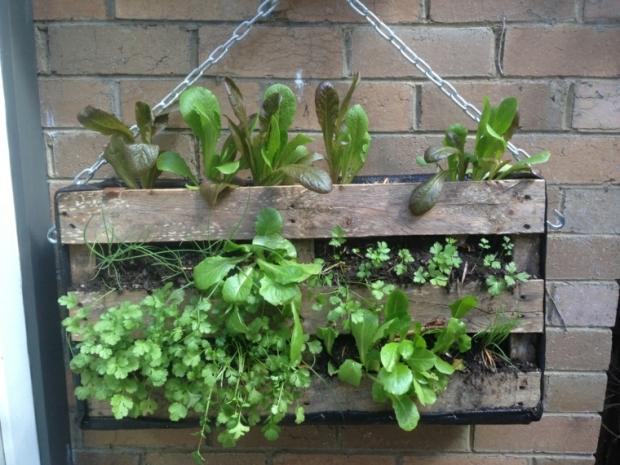 jardines verticales4