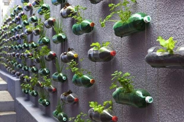 muros-verdes-verticales-botellas